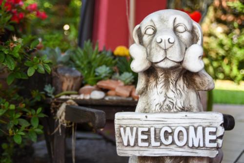 Un cane è sempre benvenuto